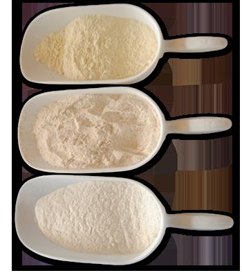 prodotti-Pane dell'anno 1000-panificio genova-pane-panificio-farine