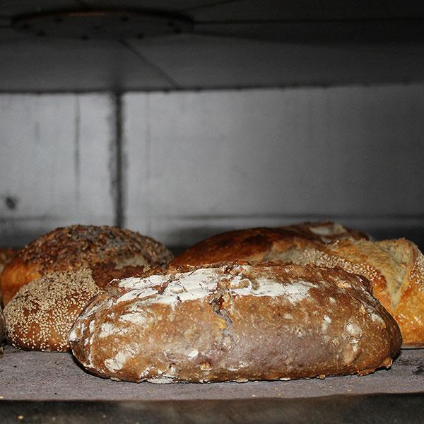panificio Pane dell'anno 1000-panificio Pane dell'anno 1000 genova-pane dell'anno 1000- pane dell'anno 1000 genova-panificio genova-farina-biologica-lievito-naturale-pane-focaccia-grissini-dolci-pane-forno