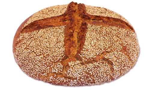 senatore cappelli-grani speciali del sud-prodotti-panificio Pane dell'anno 1000-panificio Pane dell'anno 1000 genova-pane dell'anno 1000-pane dell'anno 1000 genova-panificio genova-farina-biologica-lievito-naturale-pane-focaccia-grissini-dolci